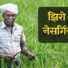 जाणून घ्या काय आहे झिरो बजेट नैसर्गिक शेतीची संकल्पना