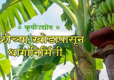 कृषीउद्योग : केळीच्या खोडापासून धागानिर्मिती